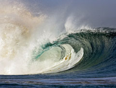 Next-Wave